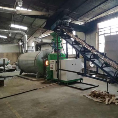 Biomass conversion system